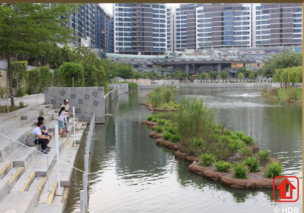 Innovative Floating Wetlands and Freshwater-Tolerant Mangroves