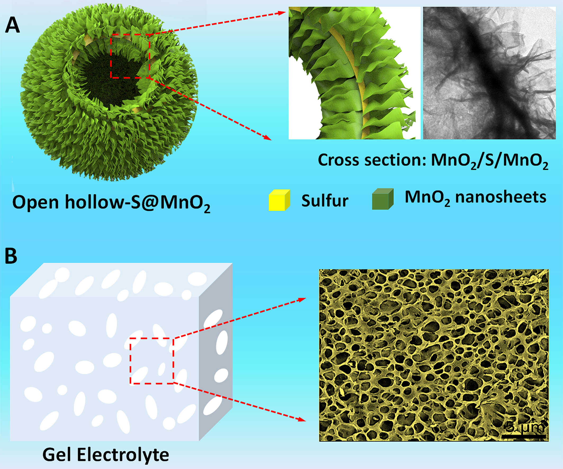 New Generation of Lithium Sulfur Battery Based on Nanostructured Open-Hollow Sulfur@MnO2 Cathode